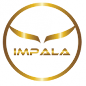 PiP iT Global - Who we work with - Impalapay – ImpalaPay is an innovative fintech company that is eliminating traditional boundaries creating a border free to interconnected low cost payments network.